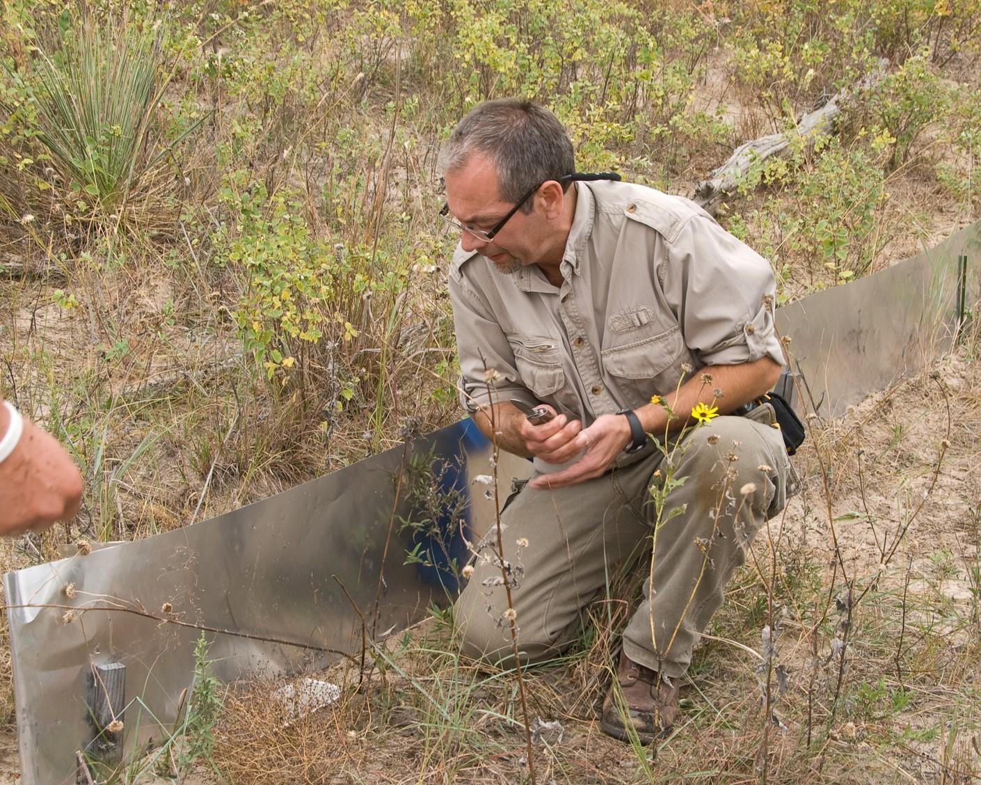 Photo of field herpetology